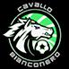 Cavallo Bianconero